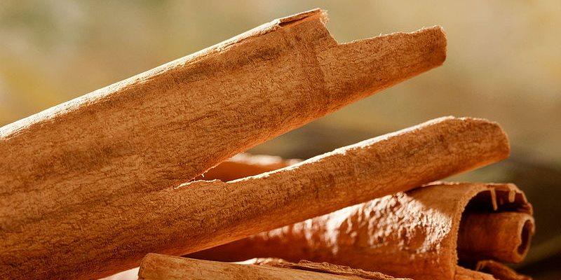 Cinnamon – Cinnamomum Zeylanicum