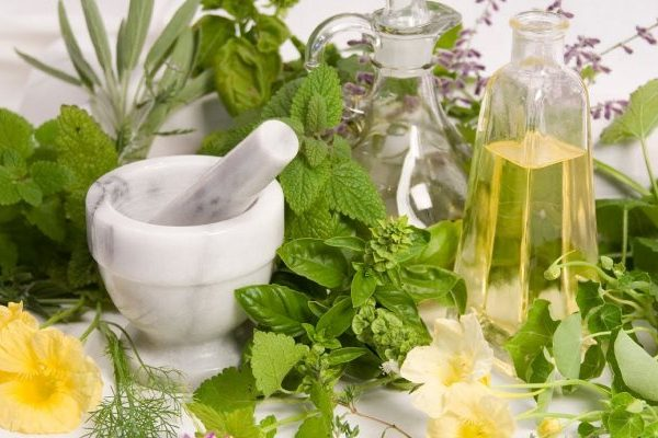 Herbs for hairloss