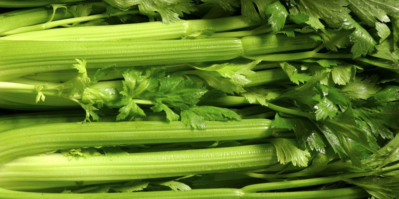 Celery health benefits