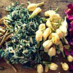 Αφροδισιακά βότανα και μπαχαρικά | Μέρος 1o