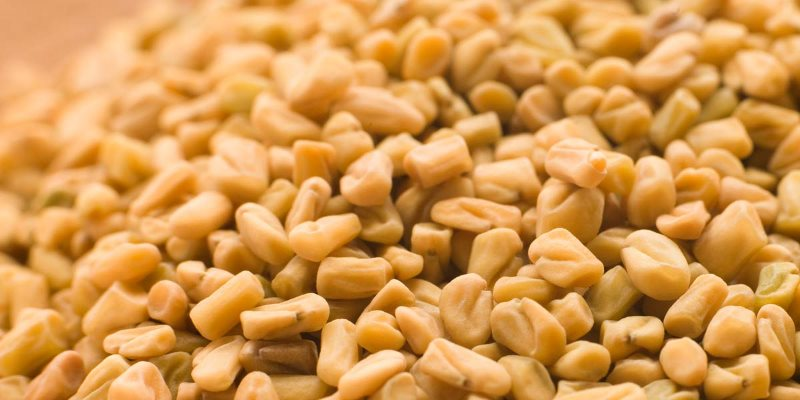 Fenugreek skin benefits