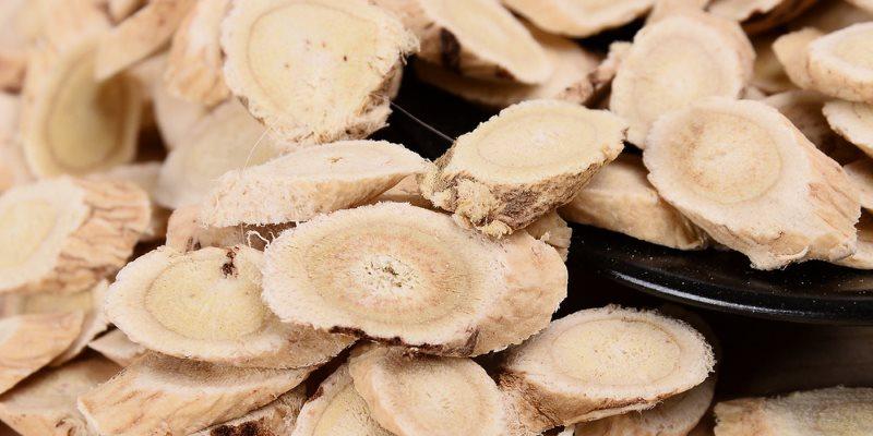 Astragalus health benefits, Huang Qi