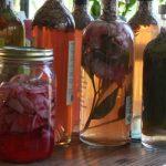 Healing herbal wines