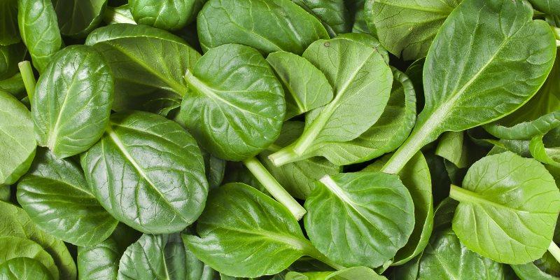 Spinach skin benefits