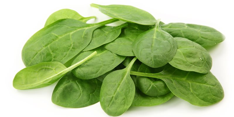 Spinach health benefits