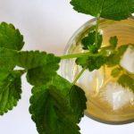 Relajante té helado de hierbas