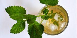 Home made Ice tea recipe