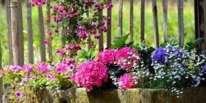 Create a unique herb garden