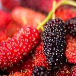 Get rid of wrinkles with mulberry extract!