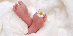 Herbs safe for babies
