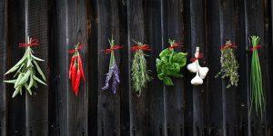herbs synergy
